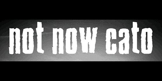 Not Now Cato Original Band Glastonbudget Tribute Band Music Festival logo